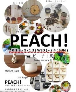 PEACHE5B195-thumbnail2.jpg